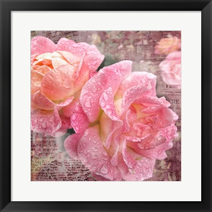 Framed Fresh Rose III Print
