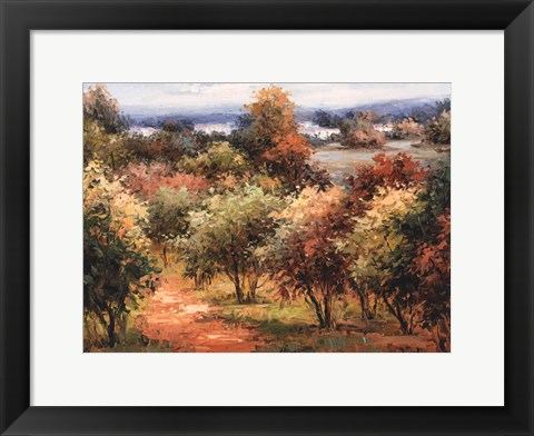 Framed Sun Dappled Country Road Print