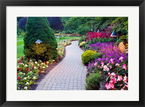 Framed Path and Flower Beds in Butchart Gardens, Victoria, British Columbia, Canada Print
