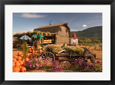 Framed Log Barn and Fruit Stand in Autumn, British Columbia, Canada Print