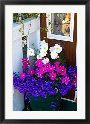 Framed British Columbia, Victoria, Flower Pot Print