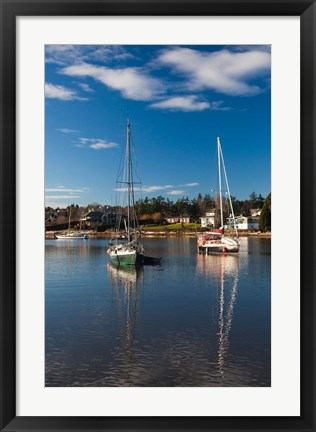 Framed Comox Harbor, Vancouver Island, British Columbia, Canada Print