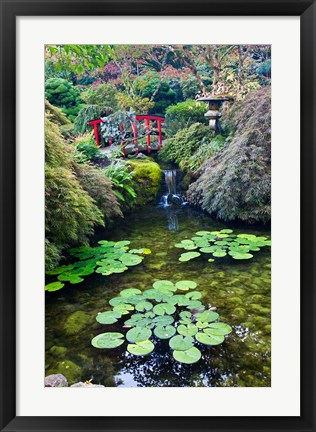Framed Red Bridge, Autumn Color, Butchard Gardens, Victoria, British Columbia, Canada Print