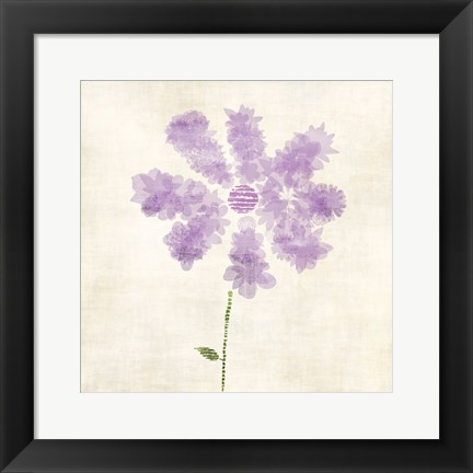 Framed Flowers Petals Print