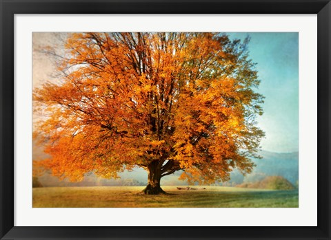 Framed Autumn's Passion Print
