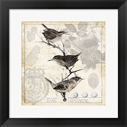 Framed Botanical Birds Black Cream I Print