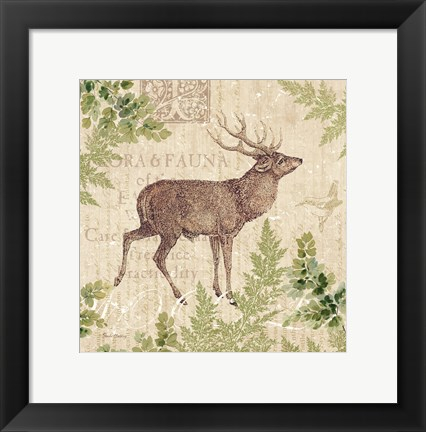 Framed Woodland Trail I (Deer) Print