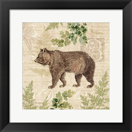 Framed Woodland Trail II (Bear) Print