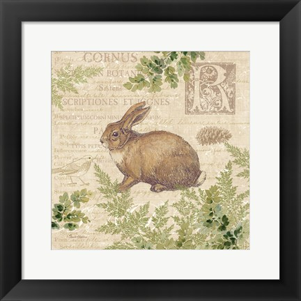 Framed Woodland Trail IV (Rabbit) Print