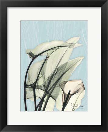 Framed Calla Lily Leaves Print