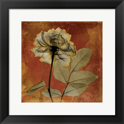Framed Rose 6 Print