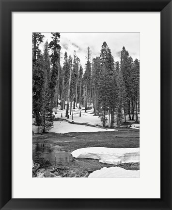 Framed Sweet Winter BW Print