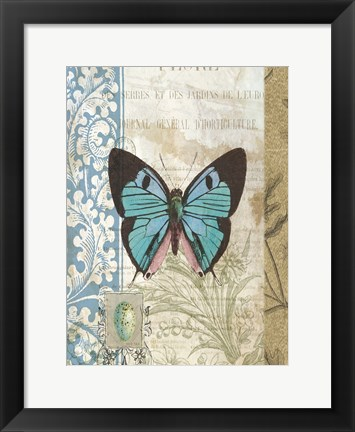 Framed Butterfly Blue Print