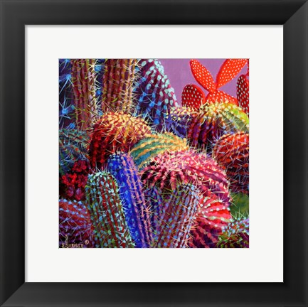 Framed Barrel Cactus 4 Print