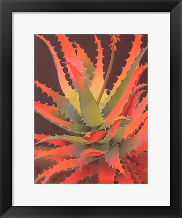 Framed Sunset Agave Print