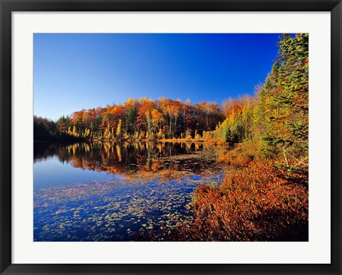 Framed Pond in the Chaquamegon National Forest, Cable, Wisconsin Print