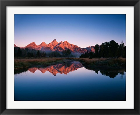 Framed Teton Range reflecting in Beaver Pond, Grand Teton National Park, Wyoming Print