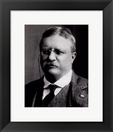 Framed Theodore Roosevelt, 26th President of the United States Print