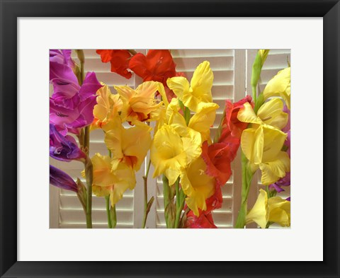 Framed Window Bloom Print