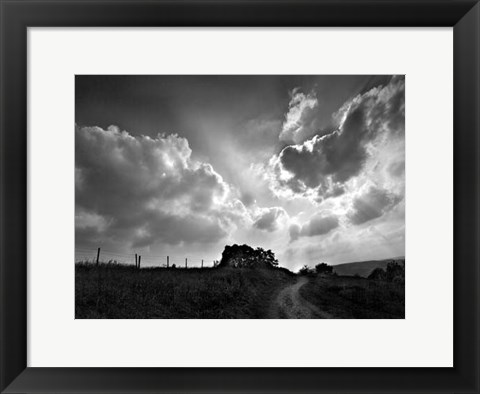 Framed Lonely Path I Print