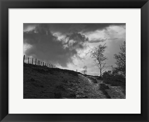 Framed Lonely Path II Print