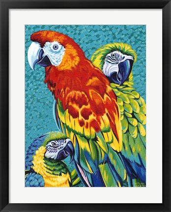 Framed Birds in Paradise III Print