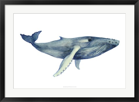 Framed Whale's Song II Print