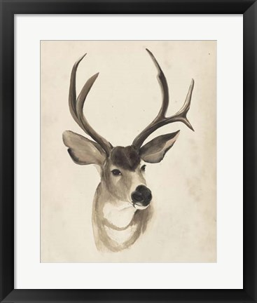 Framed Watercolor Animal Study II Print