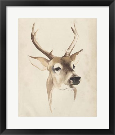 Framed Watercolor Animal Study IV Print