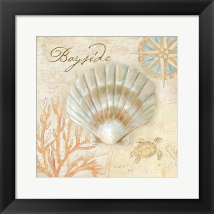 Framed Nautical Shells II Print