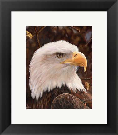 Framed Eagle Print
