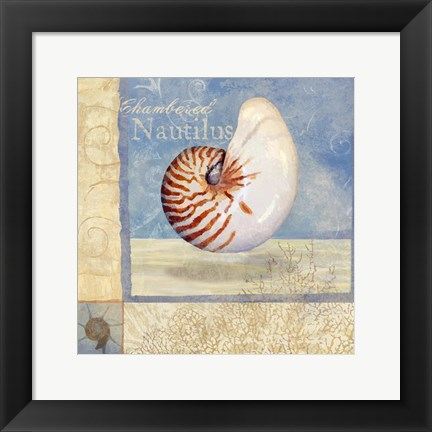 Framed Ocean Beauties V Print