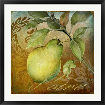 Framed From The Grove Pear Print