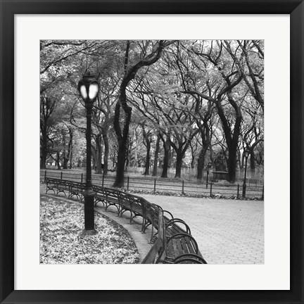 Framed Walk Through the Park Print