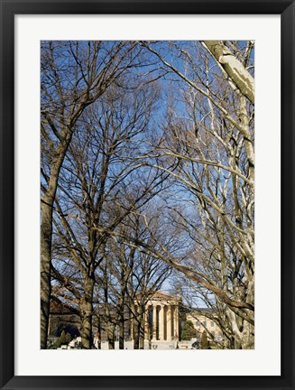 Framed Philadelphia Museum (Trees -Color) Print
