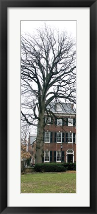 Framed Tree with House (Color) Print