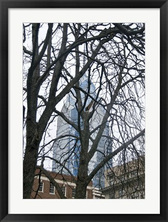 Framed Branch Curtain (Color) Print
