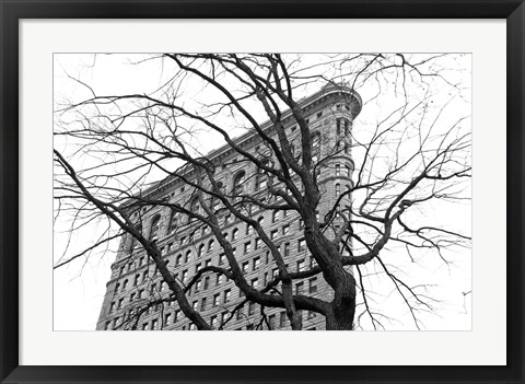 Framed Flatiron with Tree (b/w) Print