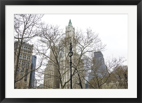 Framed Woolworth Building from City Hall Park Print