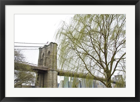 Framed Brooklyn Bridge and Willow Print
