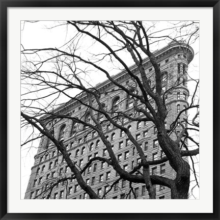 Framed Flatiron with Tree (b/w) (detail) Print