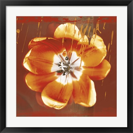 Framed Tulip Fresco (red) Print