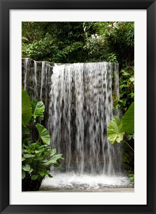 Framed Singapore, National Orchid Garden, Waterfall Print