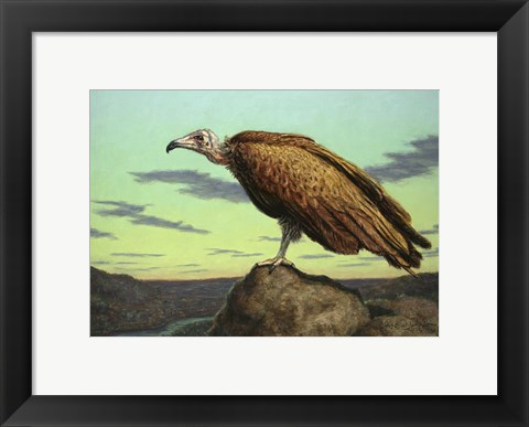 Framed Buzzard Rock Print