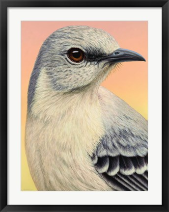 Framed Mocking Bird Print