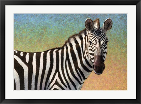 Framed Portrait Of A Zebra Print