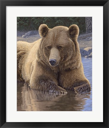 Framed Cool Down - Grizzly Print
