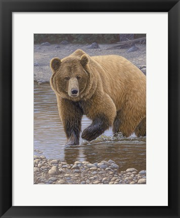 Framed Shore Patrol - Grizzly Print