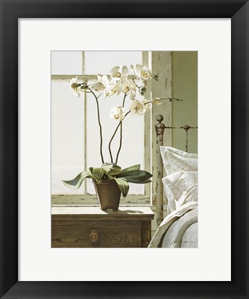 Framed Orchids In The Window Print
