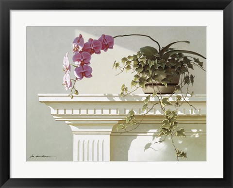 Framed Orchid On Mantle Print